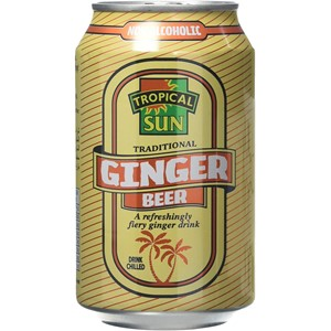 Tropical Sun Ginger Beer Bottle 330ml